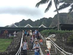 ハワイ オアフ島 ワイキキ クアロアランチ クアロア牧場 乗馬 専用車での貸切観光 チャーター 日本語タクシー