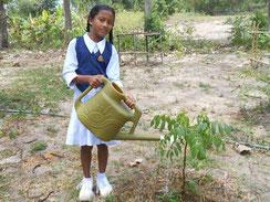 自分で植えた苗木が枯れないように、水やりを頑張っています!