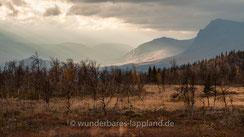 Das Reservat ist ein in Europa einzigartiges unberührtes Waldökosystem. Die bergige Landschaft im Gebiet des Kvikkjokk-Kabla Gebirgsurwaldes entstand als die europäische Kontinentalplatte mit der nordamerikanisch-grönländischen Platte vor 425 Millionen ..