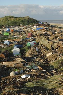 Müll am Strand von Scharhörn.