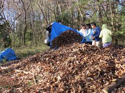 落ち葉を積み上げる