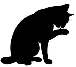 Katzengenetik, Vererbung der Fellfarben und Fellmuster bei Katzen, Bild: © Erica Guilane-Nachez - Fotolia.com
