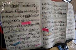 見て弾くだけでも凄い譜面に見えます