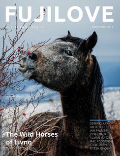 Fujilove Magazin Dezember 2016