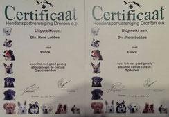 certificaat G en G gevorderden en een voor het speuren