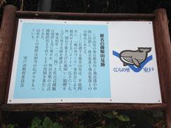 (椎名の捕鯨山見跡)