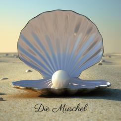 Geschichte, Die Muschel, Perle, Strand