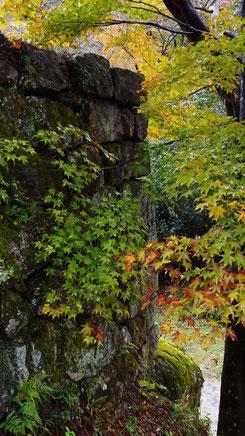 苗木城跡ランチ中津川グルメ秋満喫Naegi castle ruins lunch Japanese restaurant