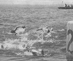Deutsche Meisterschaften im Freiwasser 1999