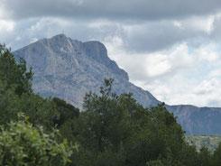 石切場から見るサント・ヴィクトワール山