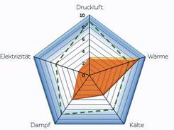 Netzdiagramm zum Energieverbrauch in der Industrie (Beispiel)