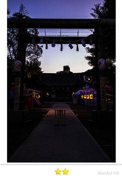 くまのすけさん: 三社祭