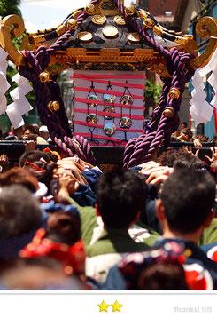 めぐきちさん: 三社祭
