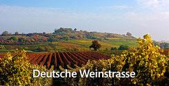Die Deutsche Weinstraße inspiriert!