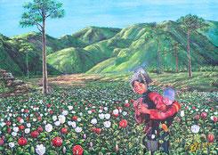 Opium-Anbau in Thailand