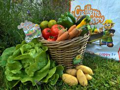 Cueillette de Cappy - fruits - legumes - panier - cappy - peronne - albert - bray sur somme - saison - drive