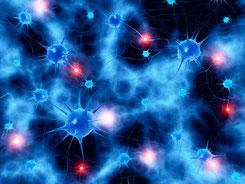Heute bestätigt die Hirnforschung: Neuronen wollen sich plastisch vernetzen; Diversität und Austausch in der Gemeinschaft regen dazu an.