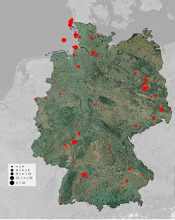 Beobachtungen von Schwanzmeisen der Unterart A. c. caudatus in Deutschland seit September 2015 [Quelle: ornitho.de]