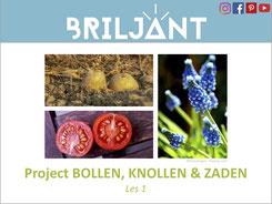 Briljant Project Bollen, Knollen en Zaden bij Verrijkend Projectonderwijs voor leerlingen in de plusklas. Hoogbegaafd, hoogbegaafdheid, basisonderwijs, basisschool, leerkracht, uitgeverij Pica.