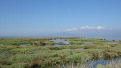 Ambracian Gulf, Ambrakischer Golf