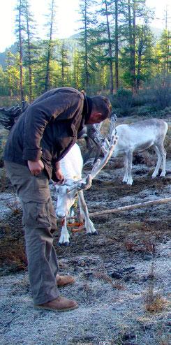Au camp Tsaatan avec les éleveurs de rennes