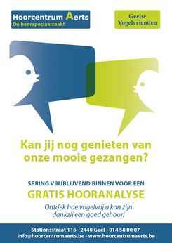 Dirk Van Bun Communicatie & Vormgeving - Grafisch ontwerp - reclame - publiciteit - Grafisch ontwerp Lommel - Advertentie - Dades Reizen
