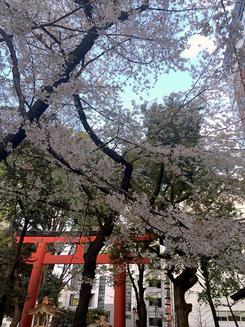 ともチンっ♪さん:新宿花園神社(4/5)