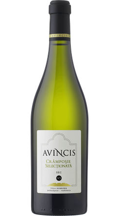 AVINCIS Cramposie Selectionata 2016