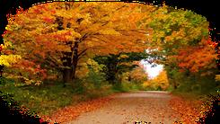 Расскажите детям про осень
