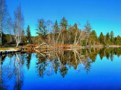 Perfekte Spiegelung am Kirchsee (Nähe Reutberg)