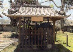 弁円懺悔の桜。西念寺