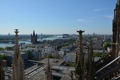 Köln, Domblick