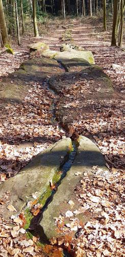 Naturdenkmal Pfaffenbrunnen
