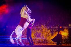 Excalibur Horsehows(c)Ch.Slawik Wuerzburg