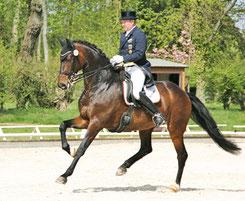 Jochen Vetters auf Sir Schenkenberg (Foto: bb)