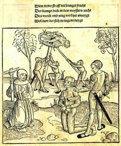 Bambergische Peinliche Halsgerichtsordnung, Bl. 40