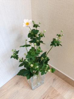 K君、Y君ありがとう。つぼみだったお花も今日一輪咲きました。かわいい。