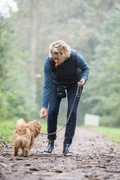 Hund wird bei Spaziergang mit Leckerchen belohnt