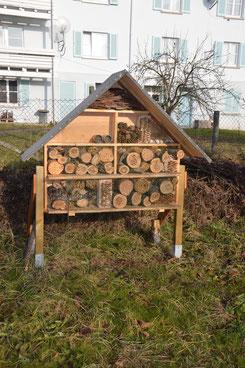 Im Rahmen Des Streuobstwiesenprojektes Erfuhren Kinder Bedeutung Der Insekten Für Bestäubung Blüten Schnell Entstand Idee Ein Großes