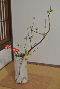 山茱萸と撫子