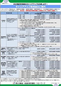 キャリアアップ助成金リーフレット(平成30年度版)
