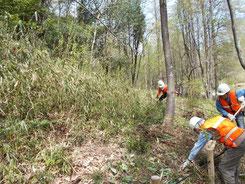 カタクリの森山側の枯草除去作業