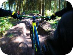 Mountainbiker Fahrradfahrer Harz
