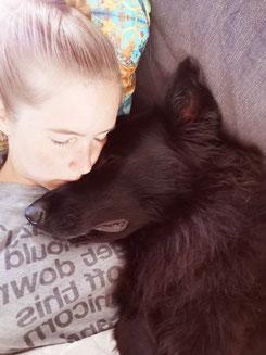 Patrizia Müller, Tierpflegerin EFZ, Hundetrainerin, Hundeverhaltensberaterin