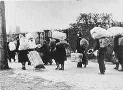 Flüchtlinge auf dem Weg Richtung Westen, 1945 Quelle: Bundesarchiv, Bild 146-1985-021-09