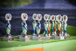 Siegerpokale vom 2. Chemnitzer Mopsrennen