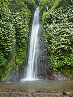 Bild: Der Wasserfall von Munduk