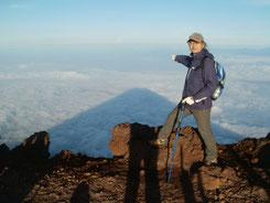雲海の逆富士