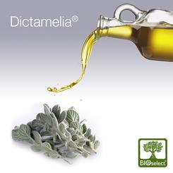 Dictamelia combinaison de dictame de crète et d'huile d'olive
