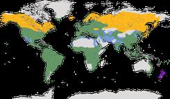 Karte zur Verbreitung der Vogelfamilie der Drosseln (Turdidae)